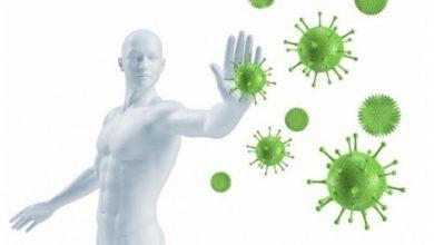 Bağışıklık Sistemi ve Koronavirüs
