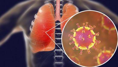Photo of Koronavirüs: Hollandalı bilim insanlarına göre iyileşen Covid-19 hastalarında bir yıl içinde yeniden virüs görülebiliyor