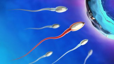 Photo of Koronavirüs geçiren erkeklerde kısırlık riski olabilir!