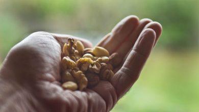 Photo of Bağışıklığı güçlendirmek için bu besinler kurtarıcınız olacak